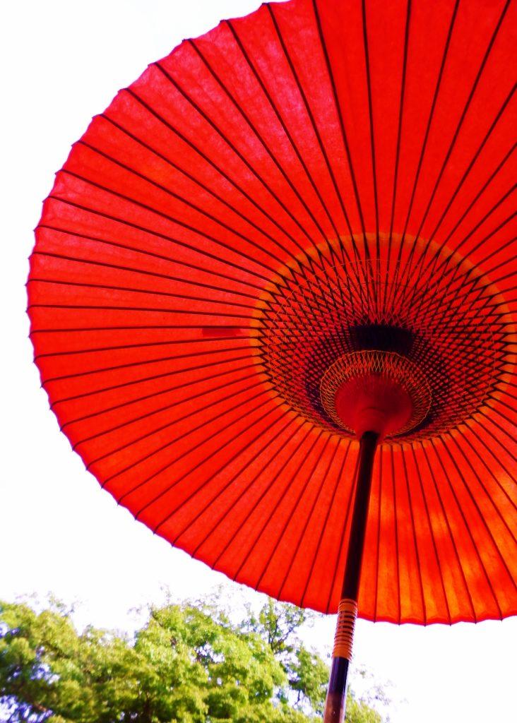和傘のイメージ(ハミングバード)